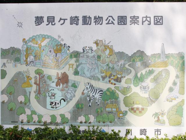 レッサーパンダやペンギンも!無料で動物たちと過ごせる「夢見ヶ崎動物公園」