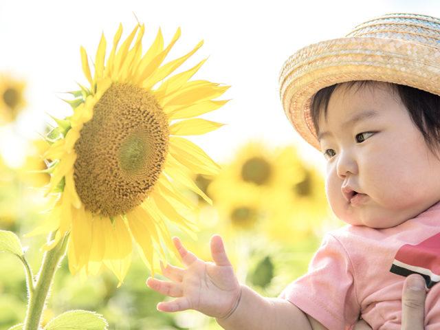 赤ちゃんとの夏の過ごし方~お出かけと暑さ対策~【助産師コラム】