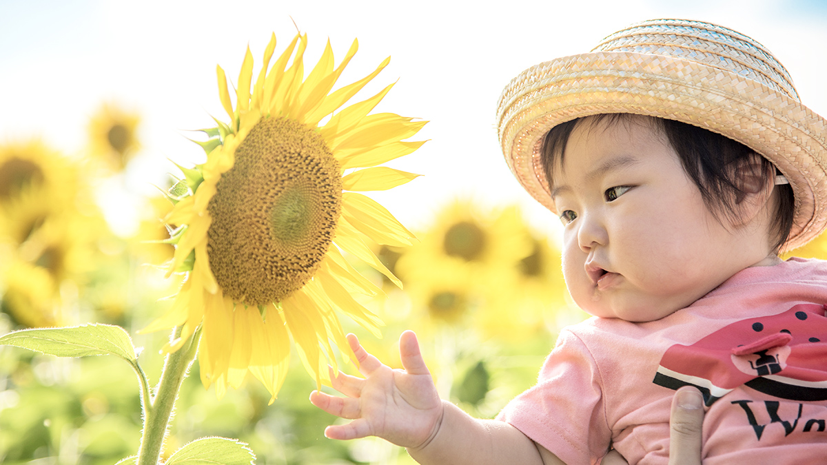 赤ちゃんの夏のお出かけと暑さ対策01